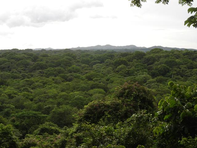 ¿Cuanto y donde contribuye la Conservación Privada en Costa Rica?... (1/6)