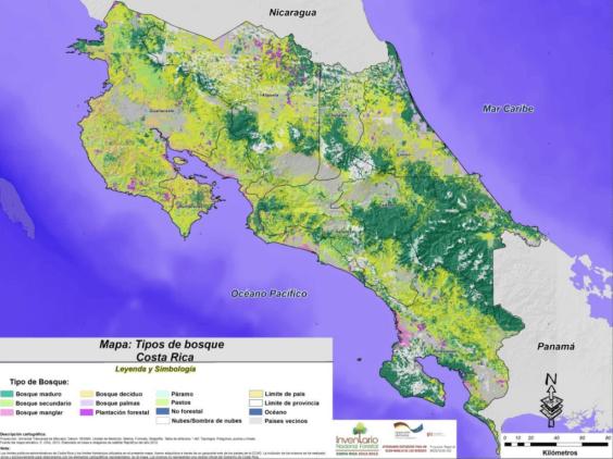 Tipos-de-bosques-en-Costa-Rica-1024x767